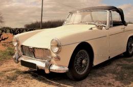 RetroRacing - MG MIDGET 1969